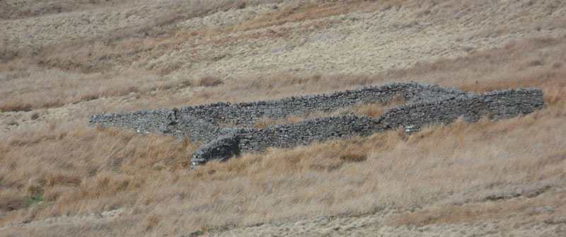 Sheepfold in Boltsburn valley with sheltering wings projecting from the four corners.